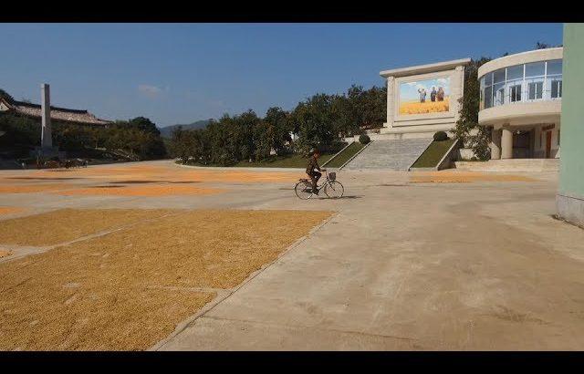 【朝鲜世界2】22集:朝鲜合作农场的田地里,庄稼开始发黄,要丰收了 / 旅行纪录片我去看世界