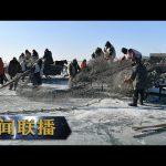 《新闻联播》 总书记的牵挂·一枝一叶总关情 查干湖温暖的冬天 20190130 | CCTV / CCTV中国中央电视台