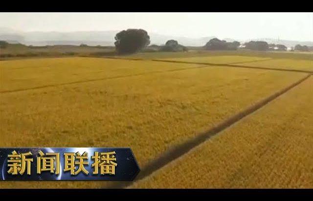 《新闻联播》 领航新时代 安徽:树作风标杆 谋发展之变 20190219   CCTV / CCTV中国中央电视台
