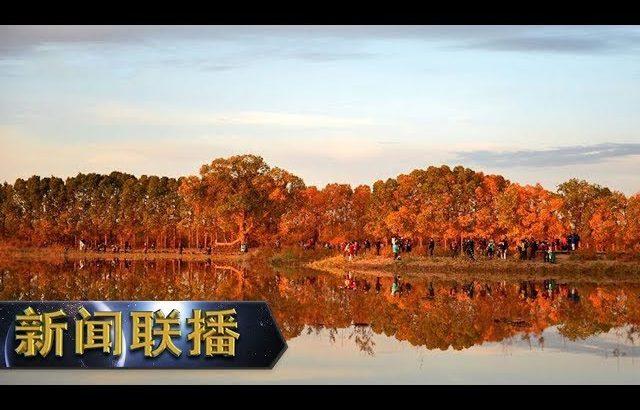 《新闻联播》 我们与总书记在一起 守护好祖国北疆这道亮丽风景线 20190306 | CCTV / CCTV中国中央电视台