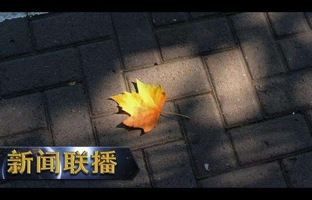 《新闻联播》 平民英雄 成就不平凡人生 20190407   CCTV / CCTV中国中央电视台