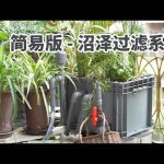 超自然超悠久又超新奇的低维护水质净化法:沼泽过滤 A natural filtration system:professional customized Swamp Filter Box / TuTu生活志