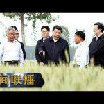 《新闻联播》 【在习近平新时代中国特色社会主义思想指引下——新时代 新作为 新篇章】优化结构 推进粮食生产绿色发展 20190825 | CCTV / CCTV中国中央电视台