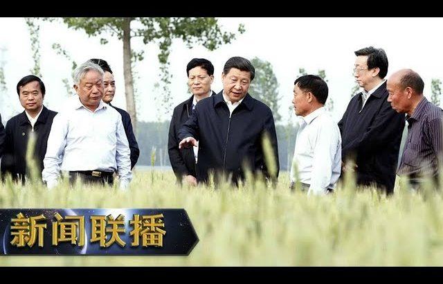 《新闻联播》 【在习近平新时代中国特色社会主义思想指引下——新时代 新作为 新篇章】优化结构 推进粮食生产绿色发展 20190825   CCTV / CCTV中国中央电视台