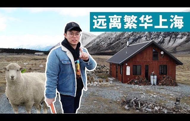 我住进了新西兰荒郊的小木屋! / Kevin in Shanghai