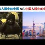 西方人眼中的中国VS中国人眼中的中国 / Kevin in Shanghai