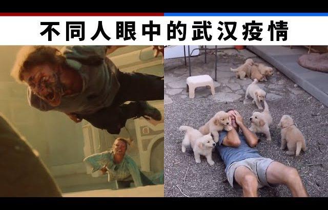 不同人眼中的肺炎疫情 How different ppl think of Coronavirus outbreak / Kevin in Shanghai