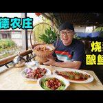 广东粤菜农庄,顺德名菜酿鲮鱼,烧鹅皮脆肉嫩,阿星吃广式煎堆Farm Cantonese Cuisine in Shunde / 阿星探店Chinese Food Tour