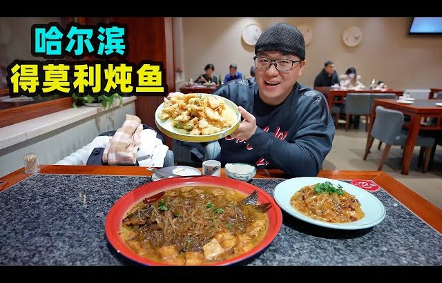 哈尔滨尖货美食,得莫利炖鱼加粉条,酸甜锅包肉,麻酱东北大拉皮Traditional cuisine De Moli stewed fish in Harbin / 阿星探店Chinese Food Tour