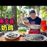 海南椰奶鸡,整只文昌鸡下锅,咸甜奶香味,阿星东郊椰林吃椰宝Coconut Milk Chicken in Wenchang, Hainan / 阿星探店Chinese Food Tour