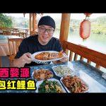 江西婺源农家菜,奶奶做荷包红鲤鱼,粉蒸肉糊豆腐,阿星茶田采茶Farm dishes in Wuyuan, Jiangxi / 阿星探店Chinese Food Tour