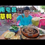 海南屯昌枫木香草鸭,砂锅煨制卤味,酱香吮指,阿星吃鸭汤拌面Street Snack Tunchang Vanilla Duck in Hainan / 阿星探店Chinese Food Tour